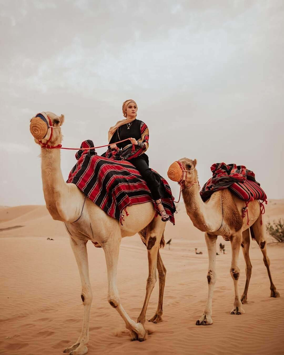 enjoy desert safari abu dhabi in 2020